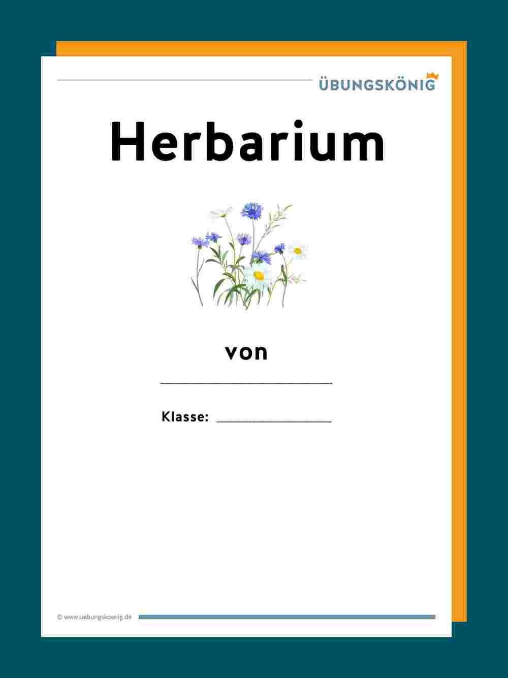 Herbarium Sheet Template Google Search Labels