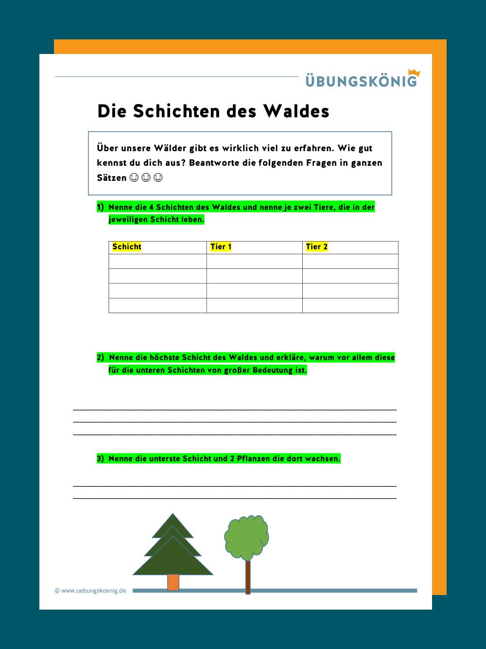 Am Schnellsten ökologische Nische Wald Arbeitsblatt
